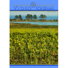 Video Journal - Volume 15, 2008 (Video Download)
