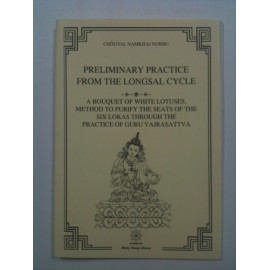 Preliminary Practice from the Longsal Cycle