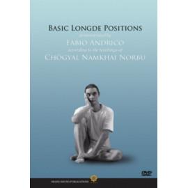 Basic Longde Positions
