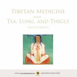 [MP3 download] Medicina tibetana e Tsa, Lung, e Thigle. Lezioni di Elio Guarisco