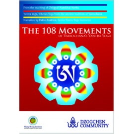 The 108 Movements of Yantra Yoga