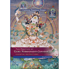 The Practice of Guru Nirmanakaya Jnanadakini