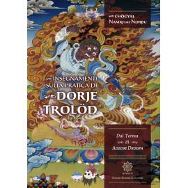 Insegnamenti sulla Pratica di Dorje Trolod