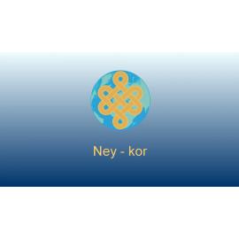 M 2.2.1_Ney-kor Tutorial Video