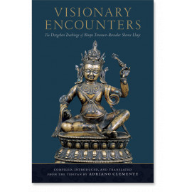 Visionary Encounters