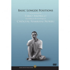 [Video Download] Basic Longde Positions (MP4)